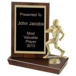 Standing Plaque, 6 Volleyball Trophy Awards