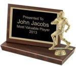 Standing Plaque, 4 1/4 Volleyball Trophy Awards