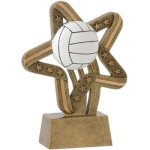 Volleyball Stars & Stripes Volleyball Trophy Awards